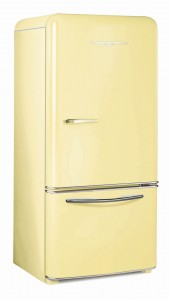 Fridge1950_Yellow_2010